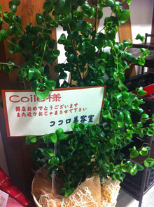 $Coile.のブログ