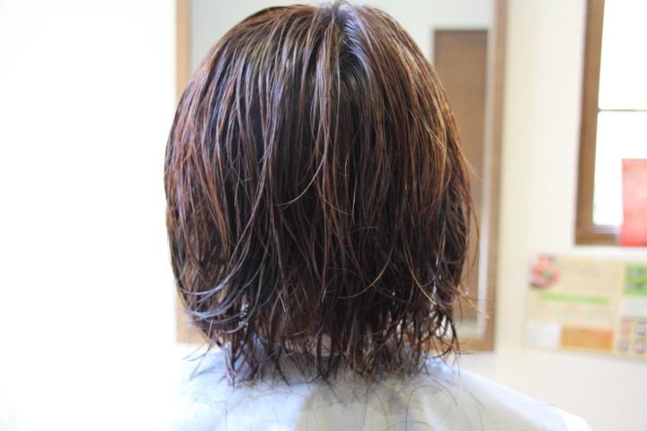 愛媛県新居浜市 Coile.のブログ